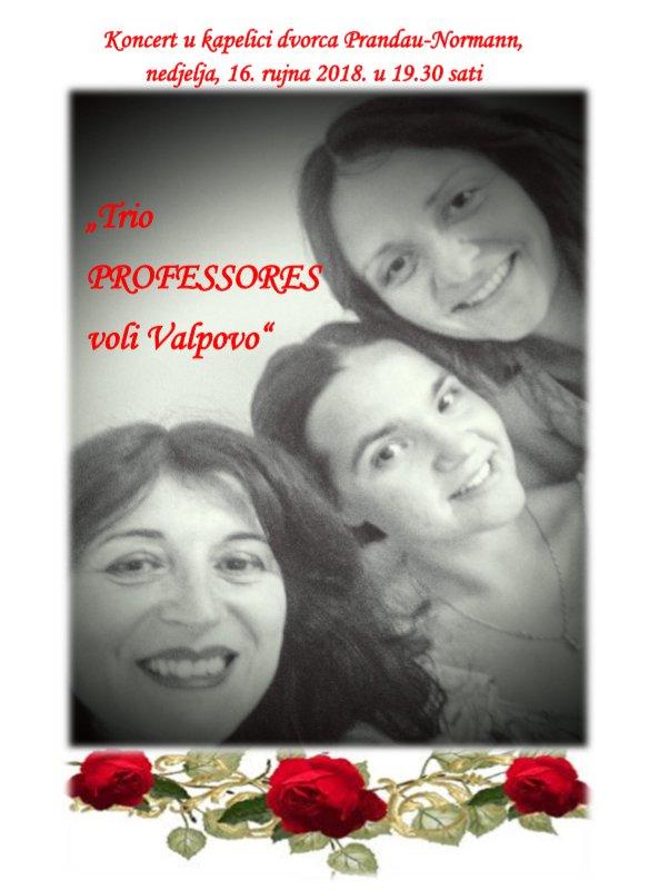 """Trio """"PROFESSORES"""" voli Valpovo"""